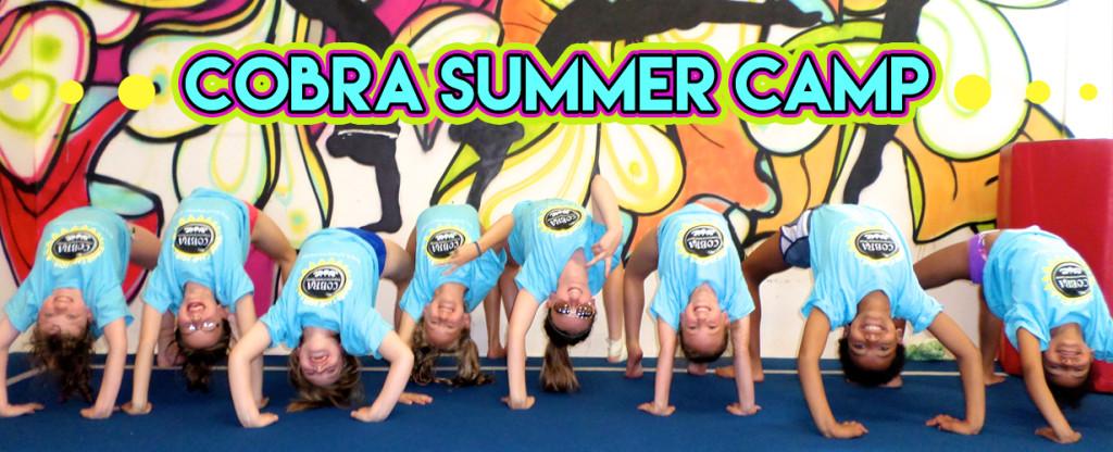 COBRA web banner_summer camp
